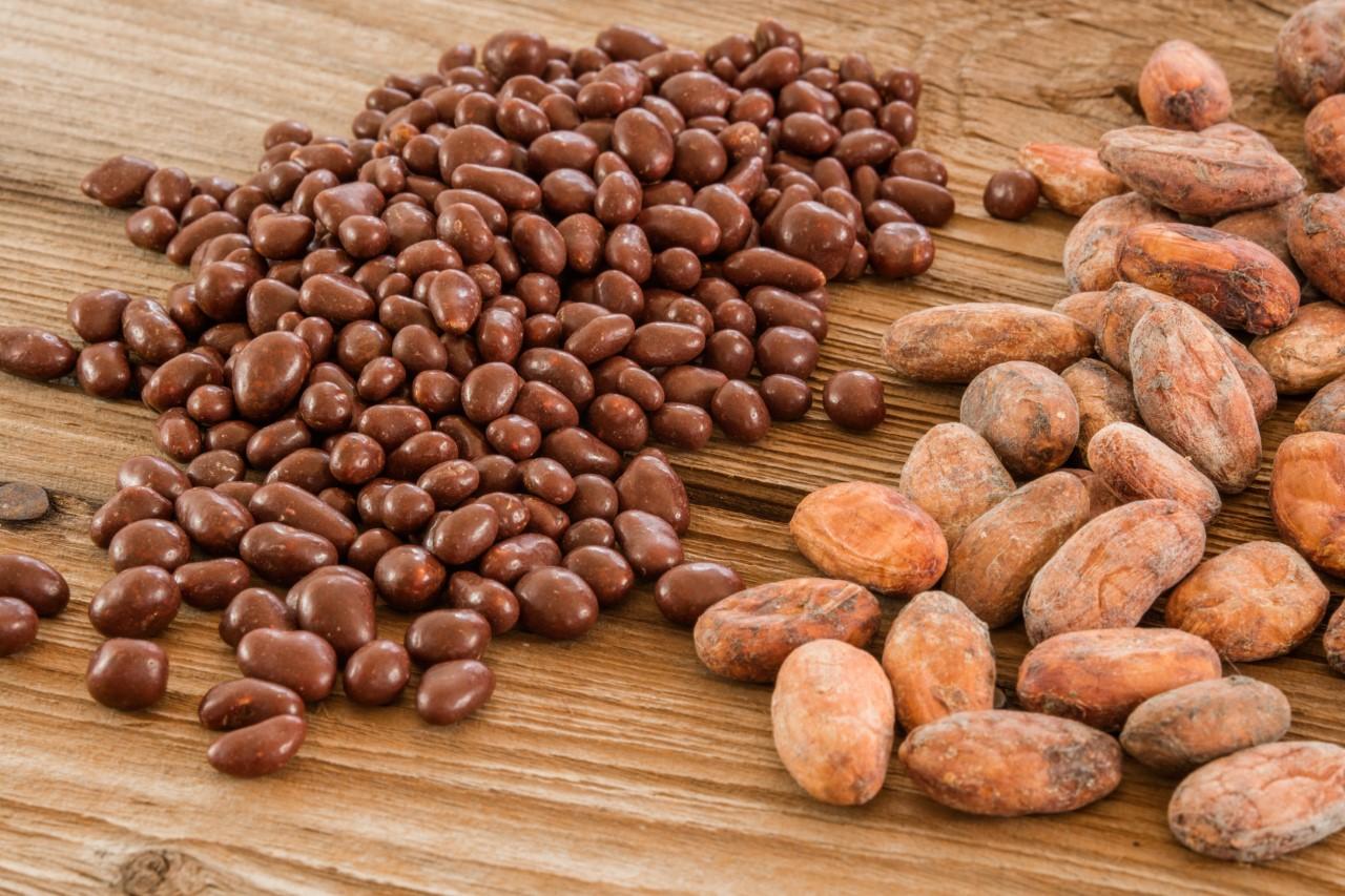 Bioinka : une fève de cacao d'exception